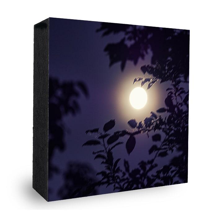 Nachtblau Vollmond Stimmung Bild auf Holz