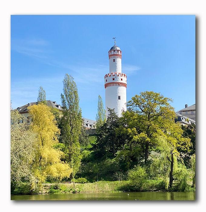 Bad Homburger Schlossturm mit Teich