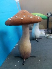 ciuperci-alice-in-wonderland-21