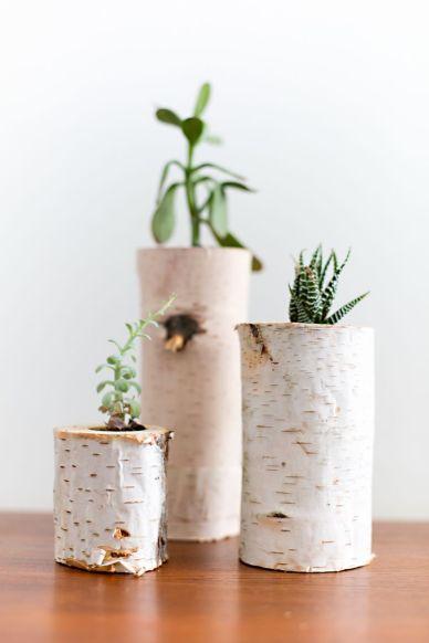 Vase en bois de bouleau