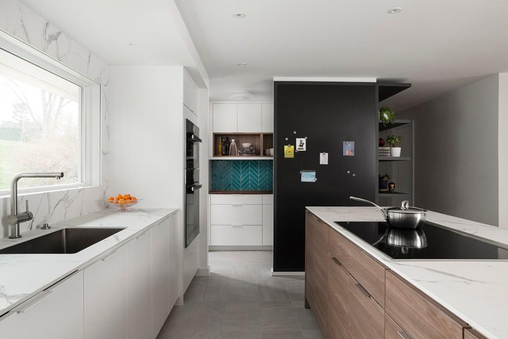 Mid-Century Modern Renovation kitchen