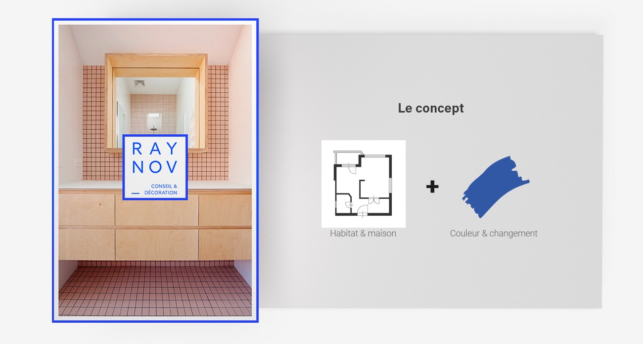 raynov-concept