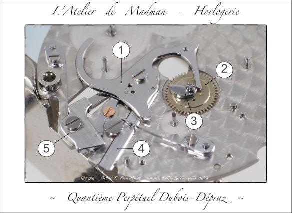 La grande bascule (1) et la roue 24 heures (2), surmontée d'un doigt (3) qui poussera l'étoile de lune chaque jour. Le long poussoir rectangulaire (4) est le correcteur des étoiles de 31 et de 7. Le poussoir à 90° (5) est le correcteur du mois. Chaque poussoir possède son ressort de rappel.