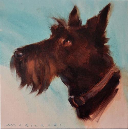 scotch terrier - óleo sobre tela - 20 x 20 cm - 2015