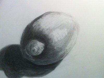 tekenen citroen