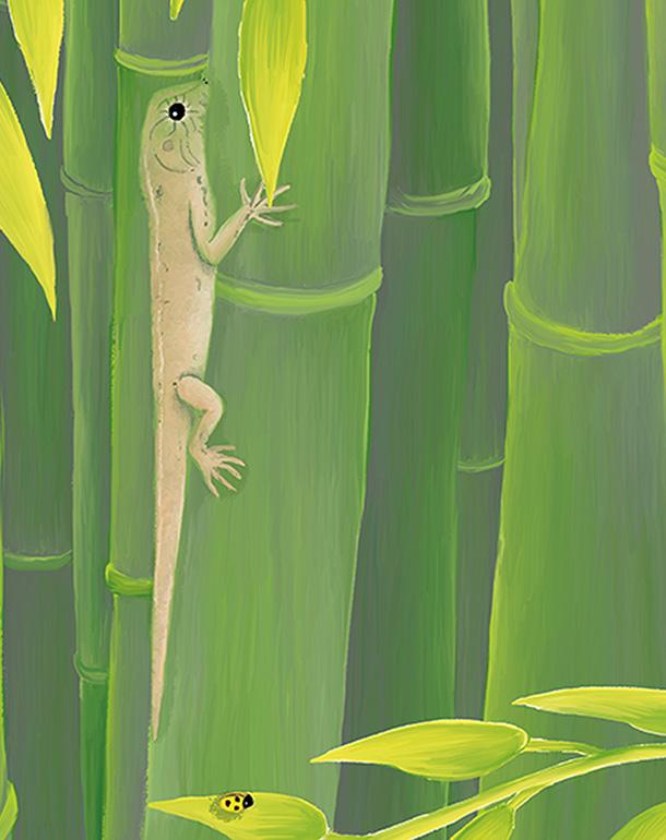 zoom-bambou-lézard-décoration-enfant-tableau-affiche-animaux