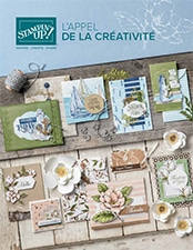 Catalogue Annuel Stampin up 2019/2020