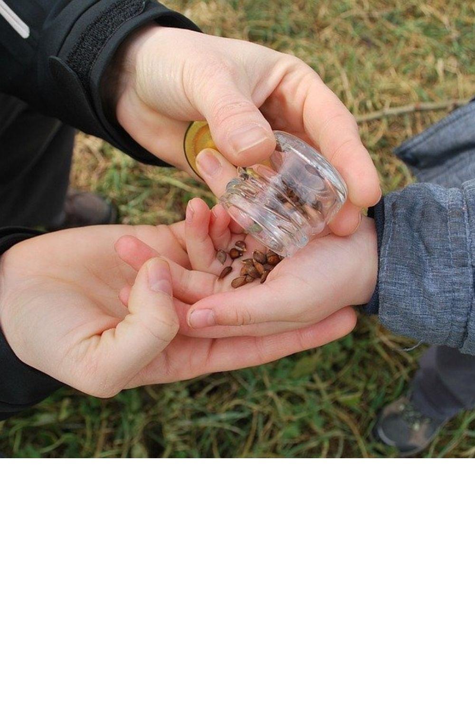 Comment initier facilement ses enfants à l'écologie ? post thumbnail image