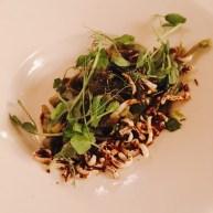 Tagliatelle aux algues, laitue de mer marinée, shiitake et oignons verts grillés.
