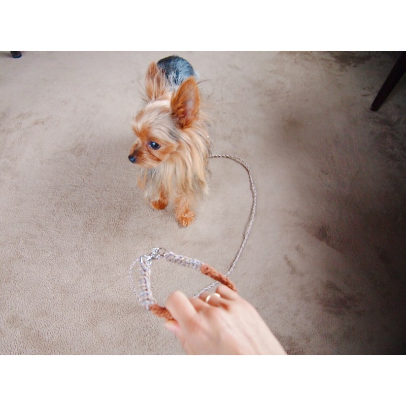 犬のリード、レザー、革、パラコード、オリジナル、オーダー、製作、販売、熊本、アトリエ・nest 、Allons-y!