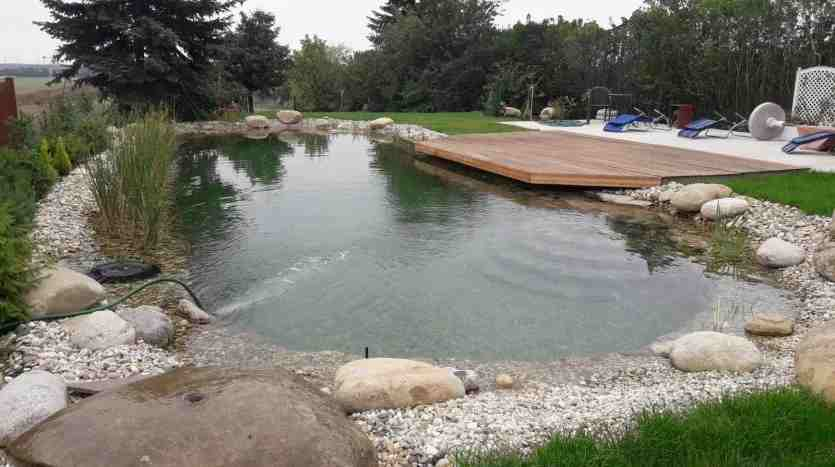 Want To Have A New Natural Pool With No Chlorine No Salt The Latest Technology Pure Clean Water Atenas Real Estate