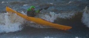 surfhoganas1