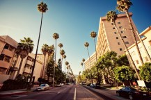Palm-Streets-of-Beverly-Hills-in-Hollywood-USA
