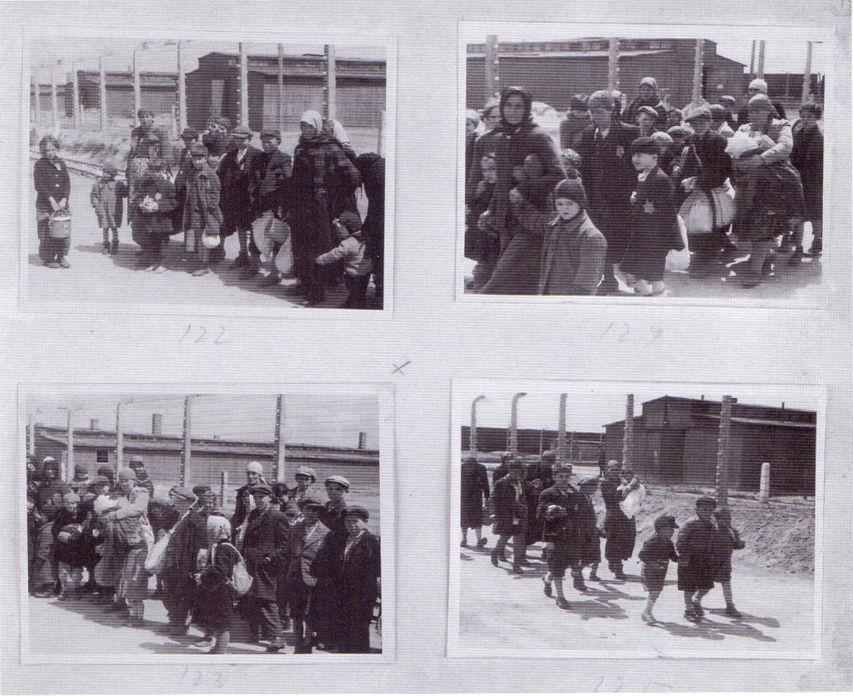 Το άλμπουμ του Auschwitz. Αυτές οι φωτογραφίες από την άφιξη στο Auschwitz τον Μάιο του 1944 τραβήχτηκαν στα πλαίσια ενός ντοκιμαντέρ από τους άνδρες των SS Bernhard Waltre και Ernst Hoffmann. Βρίσκονται σε ένα φωτογραφικό άλμπουμ που βρήκε η Lilli Jacob στο Mittelbau-Dora αμέσως μετά την απελευθέρωση της. Η 18χορνη Lilli ήταν από το Bilke, μια περιοχή στα σύνορα Ουγγαρίας-Ουκρανίας. Όλοι οι Εβραίοι των φωτογραφιών βρίσκονταν στα γκέτο και μετά μεταφέρθηκαν στο Auschwitz. Η Lilli ήταν η μόνη που επέζησε από την μεγάλη οικογένεια της, η οποία οδηγήθηκε σύσσωμη στο Auschwitz με τα τραίνα της φωτογραφίας. Είχε σοκαριστεί, καθώς στις φωτογραφίες έβλεπε όχι μόνο τον εαυτό της αλλά και τα αδέρφια της και άλλους ανθρώπους από το Bilke.