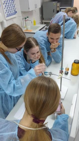 Praktinis seminaras Ukmergės r. Siesikų gimnazijos moksleiviams