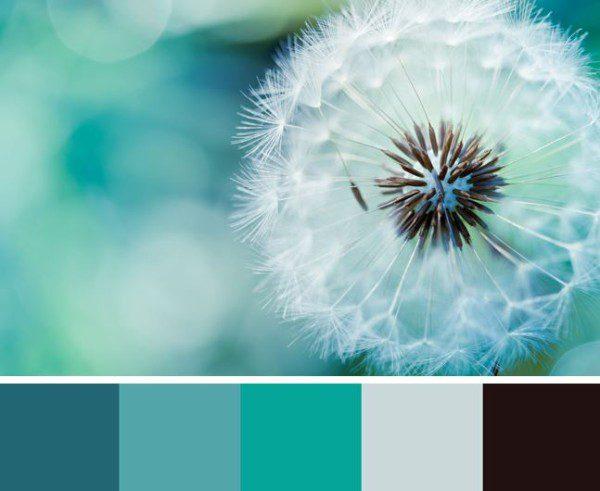Turquoise Accent Decor