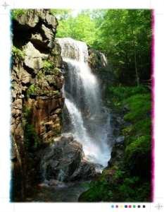 Beautiful waterfall cascading down rocks amid trees