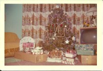 I remember this as my best childhood Christmas.  I got a large walking doll.  My brothers got a basketball hoop.  Good times.