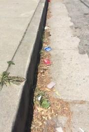Street trash.JPG