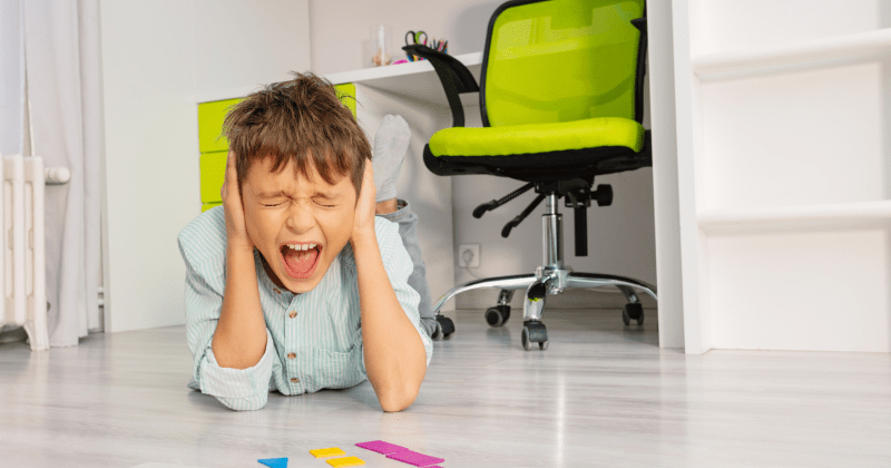 Common Problem Behaviors in Children With Autism Include Sensory Issues