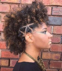 Mohawk braid hairstyles: Punk