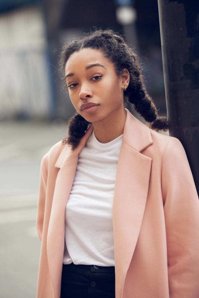 15 Best Protective Natural Hairstyles For 2019