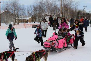 2017 Iditarod Musher Dee Dee Jonrowe arrives in Huslia. Photo by Angela Gonzalez