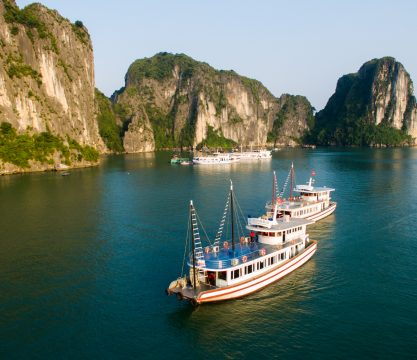 Halong Sen 1 Day Tour