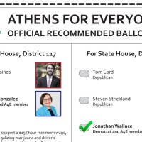 2017 Special Election Guide