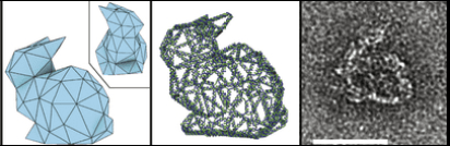 Different views of the Stanford Bunny design, from the computer-generated polyhedron and the routed DNA strand, to the finished DNA origami product visualized by scanning electron microscopy. The final product is approximately 50 nanometers wide. (Image reprinted by permission from Macmillan Publishers Ltd: Nature 523, 441–444, Copyright (2015))