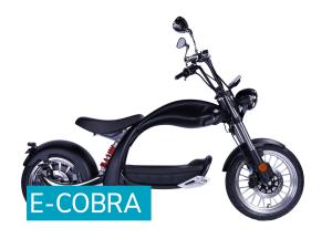 e-Cobra 2000W