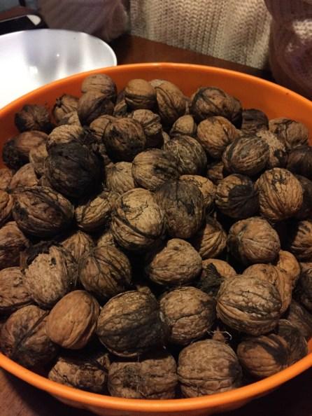 walnuts from z tree