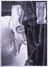 Still Life: Animal Skull