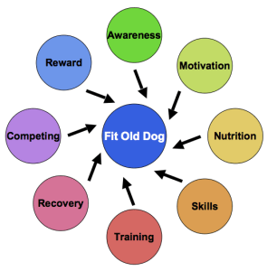 The FitOldDog training wheel: don't skip a step or neglect one already encountered, as the process is additive.