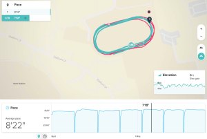 FitOldDog's track workout from FitBit