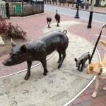 James Herriot Meets PETA: You Don't Have To Be A Rabid, Vegan, Animal Rights Activist