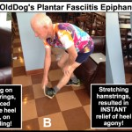 FitOldDog's Stretching Philosophy And My Favorite Core Exercise!
