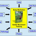 Subtle Movement Training Saves You Pain, Time And Money!