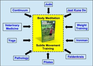Subtle Movement Training, aka Body Meditation