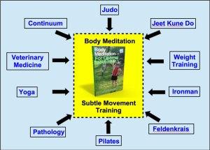Subtle Movement Training, aka Body Meditation