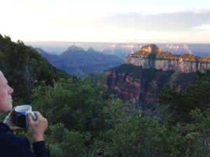subtle movement: FitOldDog contemplates the Grand Canyon