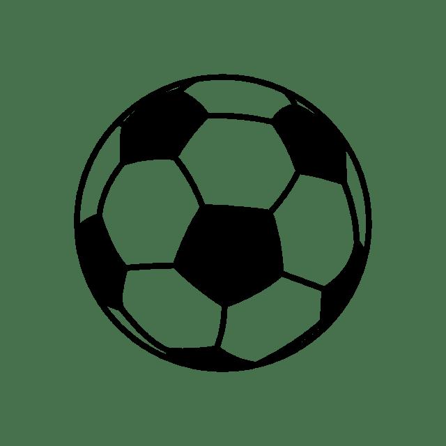 Marist Little Spartan Soccer Camp