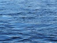 DELVINE BURNBANE FISHINGS