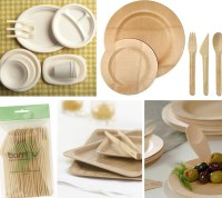 The highs and lows in eco-friendly disposable plates and ...