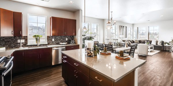 New model townhomes  marry low-maintenance, ranch-style  living with townhome convenience