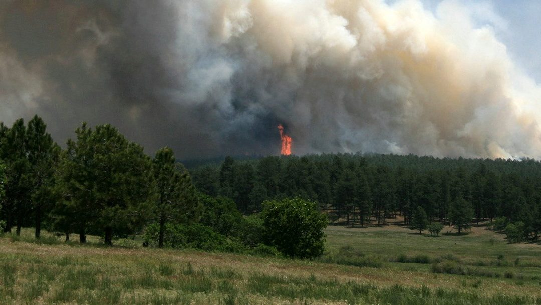 Ask the Expert: Fire mitigation
