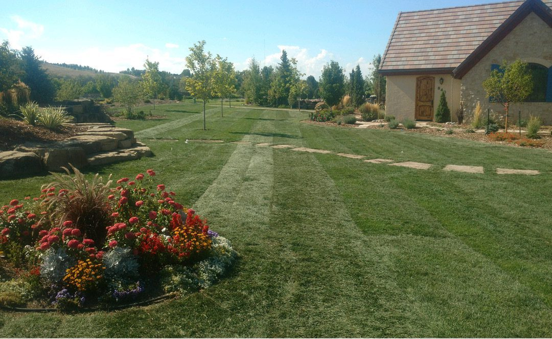 Turf benefits environment and increases property values