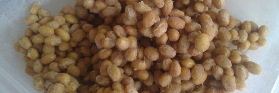 diy homemade natto