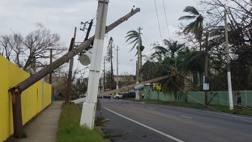 the aftermath of hurricane maria - downed power pole in aguada puerto rico