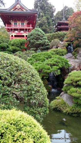 San Francisco Japanese Tea Garden Tour